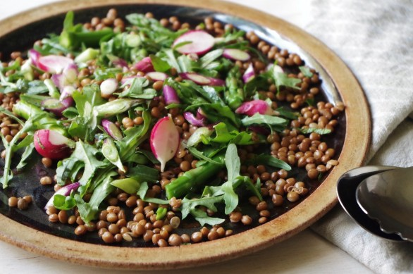 lentil and rocket salad